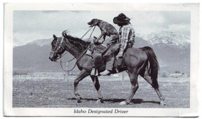 Idaho_postcard
